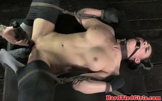 restrained puppy sub in thrashing bench