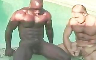 dark amp white homo sex homosexual porn