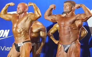 musclebulls: pro nutrition grand prix 310311