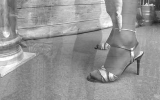stockings &; seamless hose