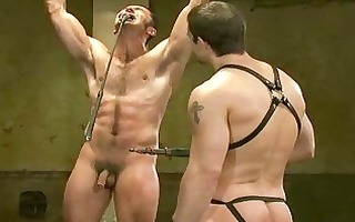 hawt homo lad hanged up from his hands